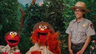Sesame Street: Gateway Seasons