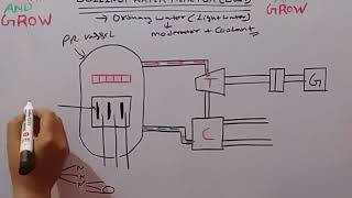 BOILING WATER REACTOR (BWR) (हिन्दी )!LEARN AND GROW