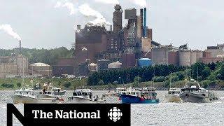 N.S. pulp mill decision pits industry against environment
