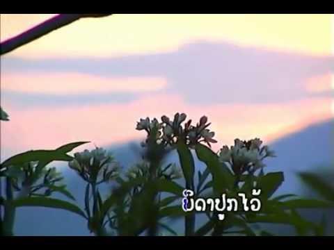 laos.Champa Meuang Lao