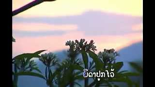 Video laos.Champa Meuang Lao download MP3, 3GP, MP4, WEBM, AVI, FLV Juni 2018