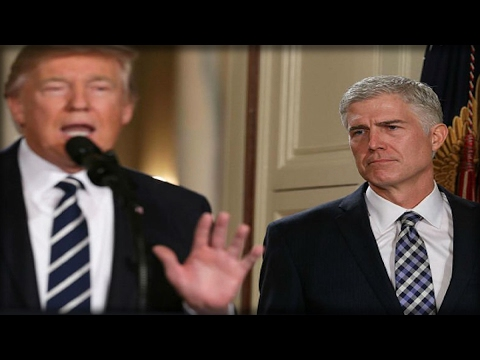 BREAKING: TRUMP'S SUPREME COURT PICK JUST STABBED HIM IN THE BACK!! TRUMP IS FURIOUS!!