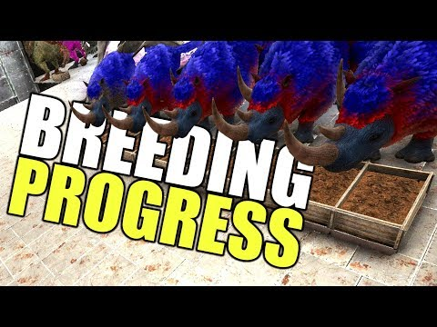 Real Progress!   ARK Official PVP Tribe Life Series   ARK: Survival Evolved   EP 42