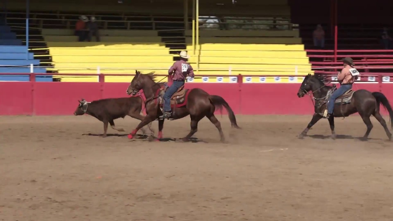 18: Where the world is heading to the 2015 World Gay Rodeo Finals or the rodeo for fiderastov (16 photos)
