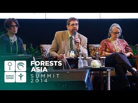 Forests Asia 2014 - Day 1 Discussion Forum, Low emissions development and societal welfare