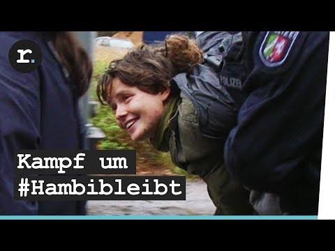 Hambacher Forst: Wie der Protest den Wald gerettet hat. Vorerst.