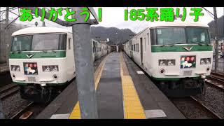 185系惜別動画 ~伊豆箱根鉄道線内で満喫したあの日…~