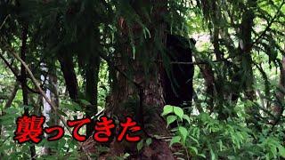 【パニック】渓流釣りで熊が襲ってきた 命懸けの逃走