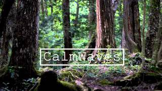 James Blake - Take a Fall For Me (ft. RZA)