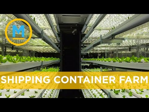 The shipping container revolution continues with pint-sized farms | Your Morning