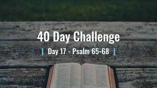 40 Day Challenge Day 17