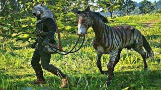 Red Dead Redemption 2 - Capturing Zebra (Margaret Mission #1)
