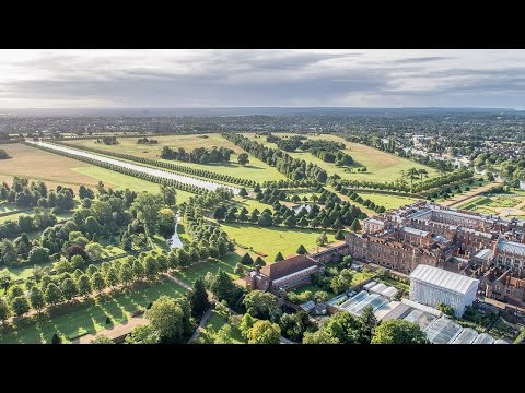 Hampton Court Palace Gardens: A Year In The Life