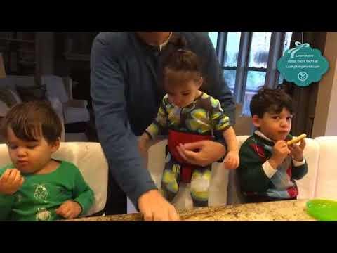 Yochi-Yochi Travel High Chair & Toddler Safety Harness