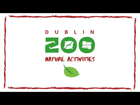 Dublin Zoo Nature Activities: Grow your own at home