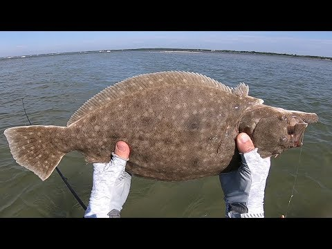 Big Flats Wading Flounder and an Ugly Dangerous Fish Caution!