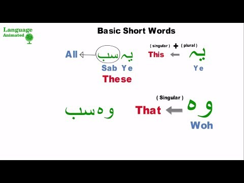 Learn Urdu - Lesson 6 - Basic Words and Phrases (Part 1)