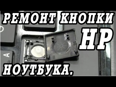 Как отремонтировать и вставить кнопки клавиатуры ноутбука HP.