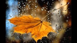 Скачать Я тебя люблю Осень