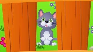 Piosenka o kotkach dla dzieci - składanka