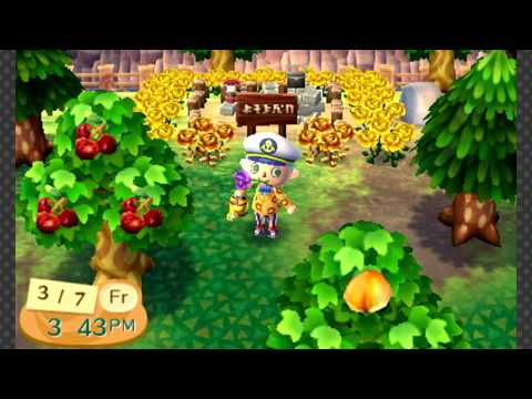 Animal Crossing: New Leaf - Molly's Birthday