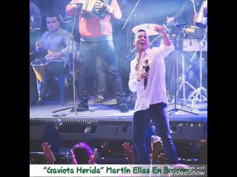 Gaviota Herida - Martín Elías Y Rolando Ochoa En Bosconia