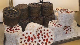 Уникальный визуал! сладкий хлеб в форме брикетов