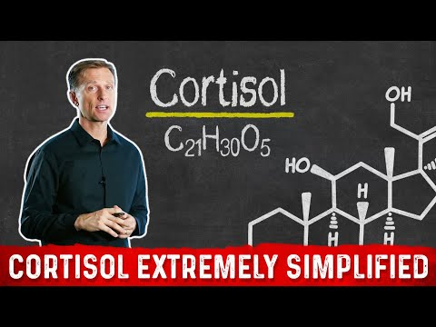 Cortisol Extremely Simplified (Dr. Berg)