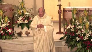 Catholic Mass for April 24th, 2016: The Fifth Sunday of Easter