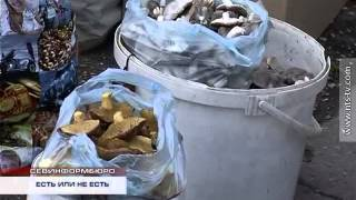 19.11.2014 Отравления грибами(, 2014-11-19T17:15:59.000Z)