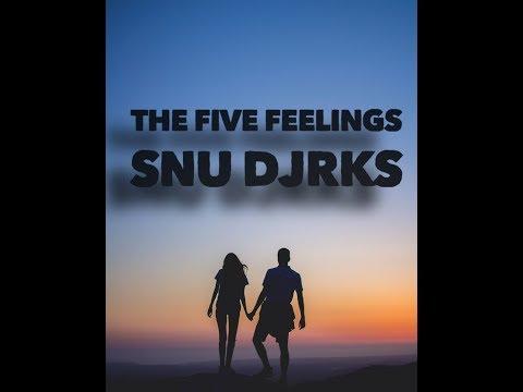 The Five Feelings By Snu Djrks (Official Audio) Punjabi Song 2018