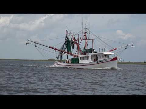 The RIG - The Restoration Initiative in the Gulf