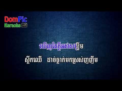 ស្លឹកឈើ ភ្លេងសុទ្ធ- Slok Cher Karaoke