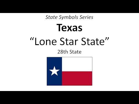 State Symbols Series Texas Youtube