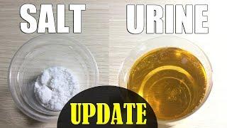 Salt Pregnancy Test Update - Is Salt Pregnancy Test Accurate ?