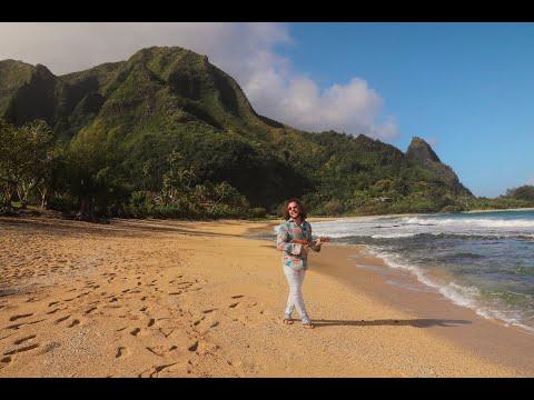 Смотреть клип Whilewild - Hawaii