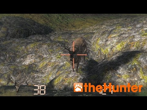 Thehunter Classic Non-Typical Whitetail Deer HD 2017