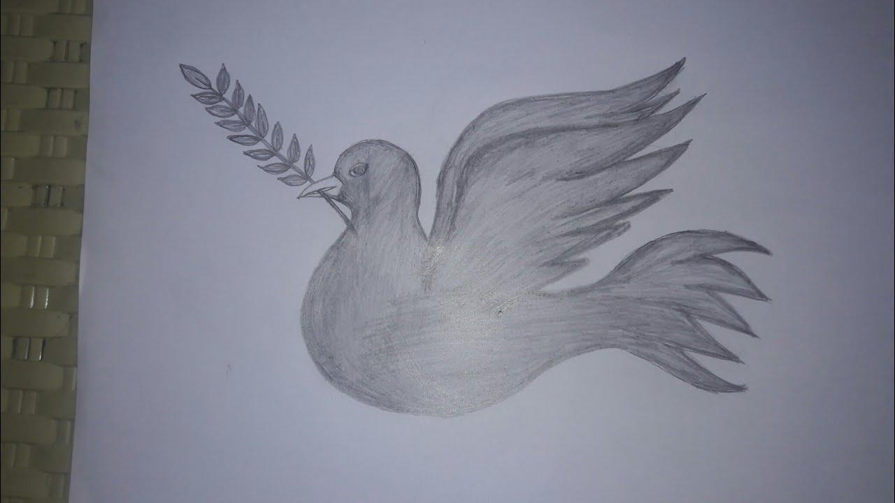 يلا نتعلم رسم حمامة السلام بالرصاص خطوه بخطوه Youtube