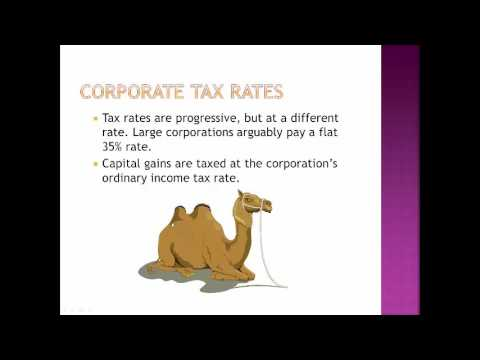 16 10 Corporate Tax Rates