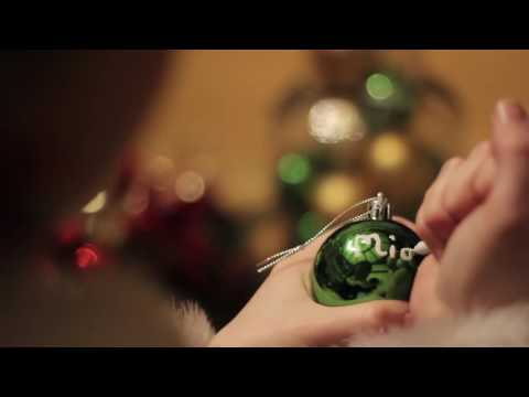 Visit Santa at Wells House