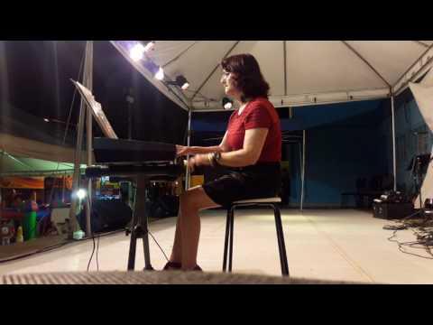 Blog da Maysa Abrão no l Circuito de Artes da Fundação Maria das Dores Campos - Eliane ao Teclado