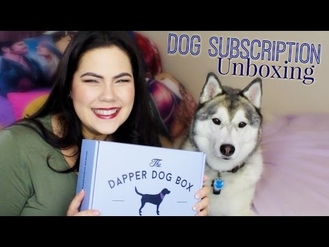 DAPPER DOG SUBSCRIPTION UNBOXING feat. My Siberian Husky
