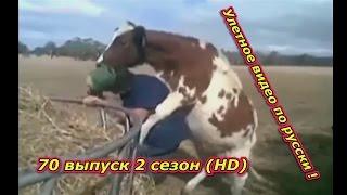 Улетное видео по русски ! 70 выпуск 2 сезон (HD)