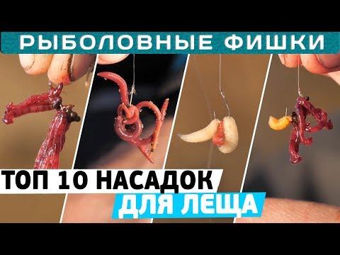Лучшие насадки для ловли ЛЕЩА! ТОП 10 от Алексея Пугача! Рыболовные фишки!
