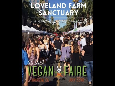 Vegan Faire Anaheim - 2017