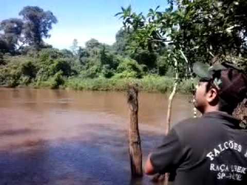 Pescando Dourado Facilmente no Rio Dourado MS,com Reginaldo Sucuri
