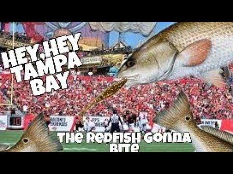 Kayak Fishing For Redfish-Tampa Bay