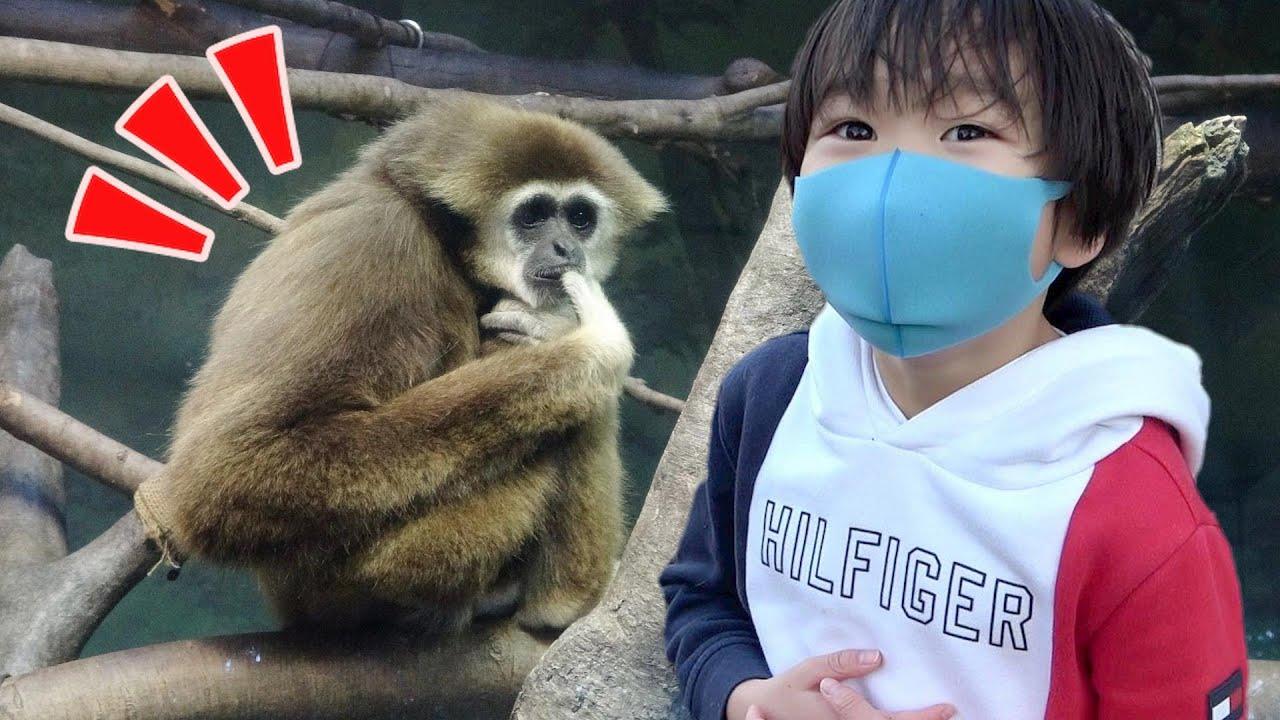 おでかけ 金沢動物園 どうぶつさんをさがしにいこう! レオスマイル