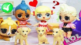 Новый мальчик ЛОЛ Сюрприз Luau берёт себе питомцев | Мультик для детей LOL Surprise Dolls