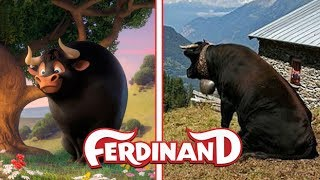 FERDINAND in Real Life NEW!